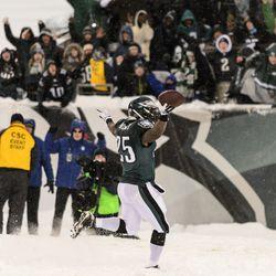 LeSean McCoy celebrates a touchdown