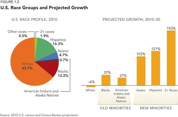 Reprinted with permission from Diversity Explosion: How New Racial Demographics are Remaking America by William H. Frey. (Brookings Press, 2014)