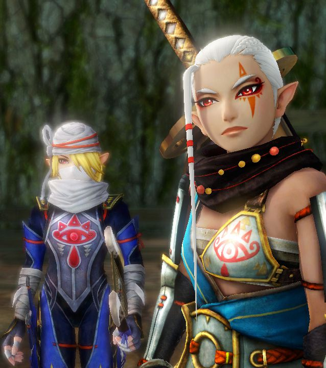hyrule warriors review screen tall