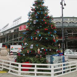 Holiday tree, pre-ceremony -