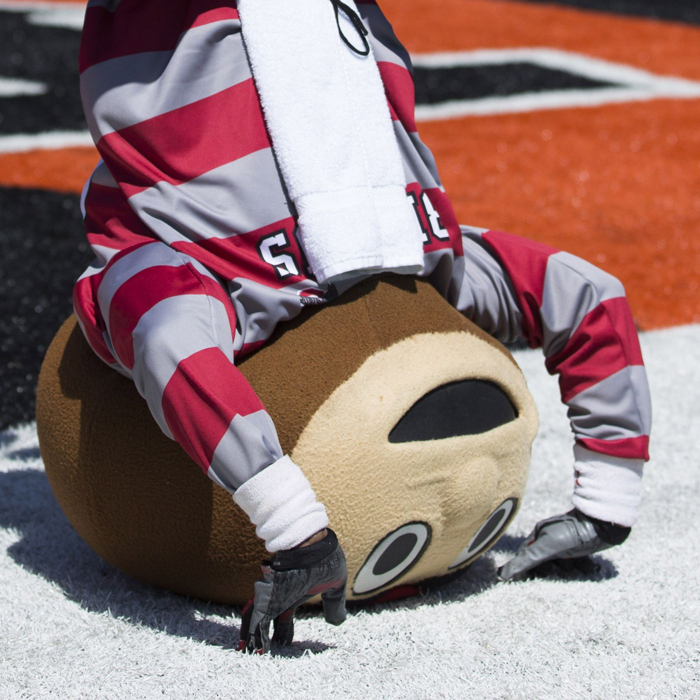 Ohio States 2013 Spring Game In Gifs Land Grant Holy Land
