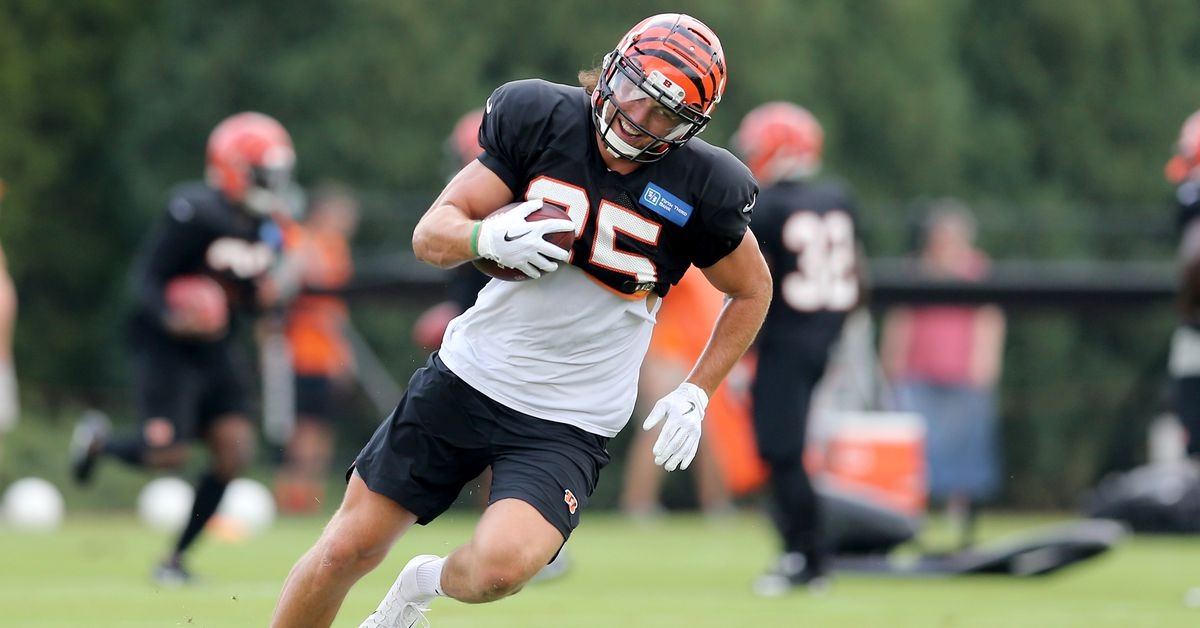 Marvin Lewis hopes Tyler Eifert doesn't play more than 50 snaps a game