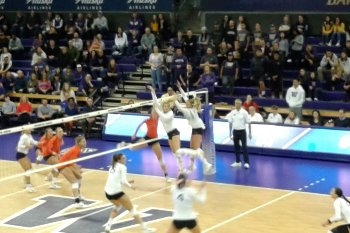 Dreams Dashed Uw Volleyball Stunned By Illinois Uw Dawg Pound