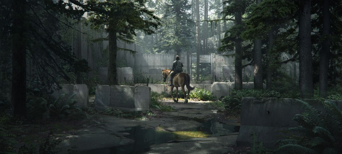 Ellie on a horse surrounded by lots of trees