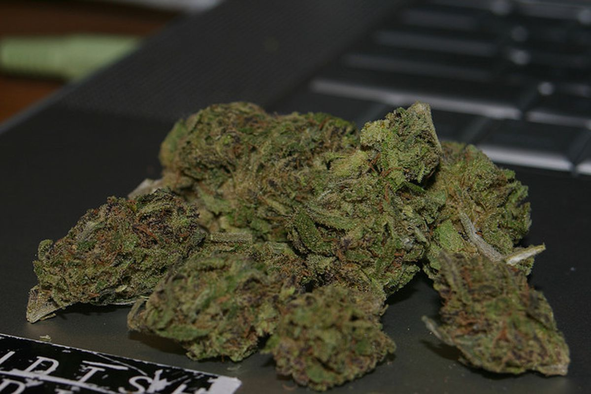 marijuana flickr