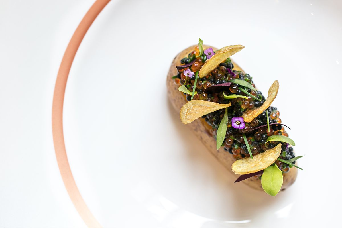Potato and roe, dulse beurre blanc, herring and trout roeClare Smyth, Core by Clare Smyth, michelin-starred London restaurant in Notting Hill