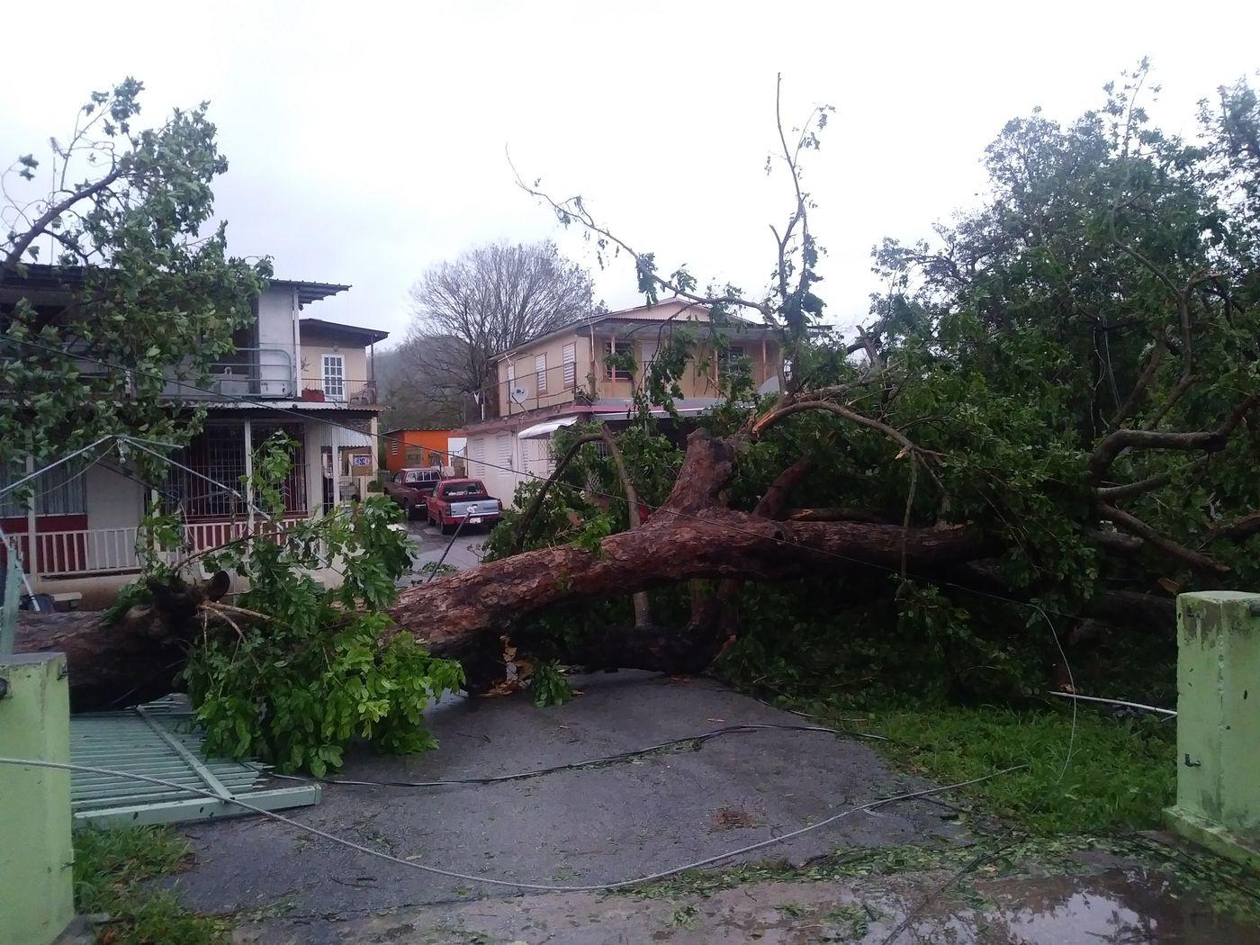 Puerto Rico blackout: 9 months after Maria, thousands still lack