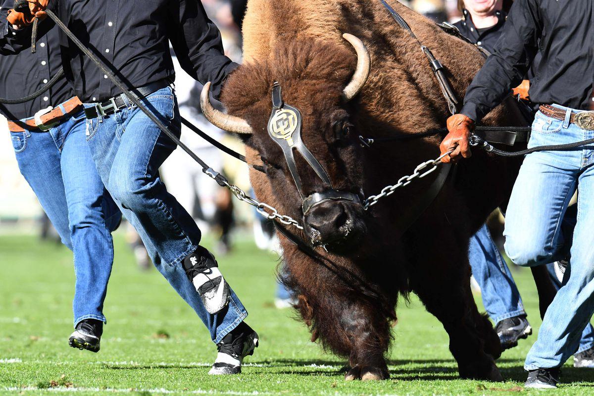 NCAA Football: Southern California at Colorado