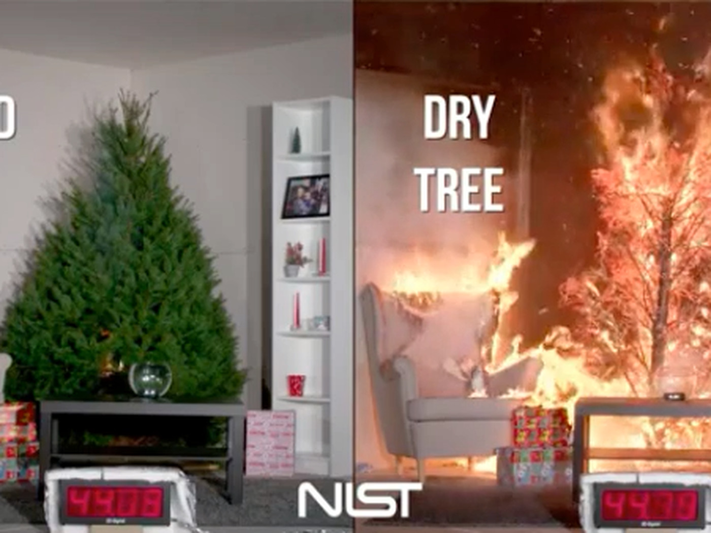 Dont Let A Dry Tree Ruin Christmas The Verge How Lights Switch And Circuit Work