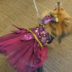 She loved prancing around in her sparkling pink dress.