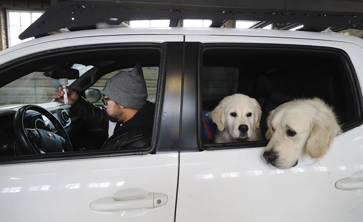 Michael Brown takes a COVID-19 test as his dogs watch at the Utah State Fairpark in Salt Lake City, where the University of Utah Health Wellness Bus set up shop on Tuesday, Dec. 15, 2020.