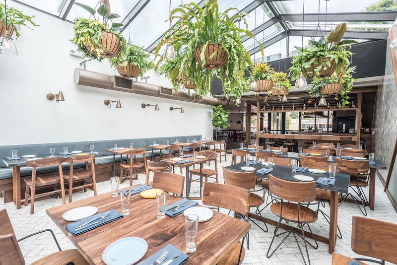 For A Rowdy But Elevated Peruvian Experience In WeHo Rosaline