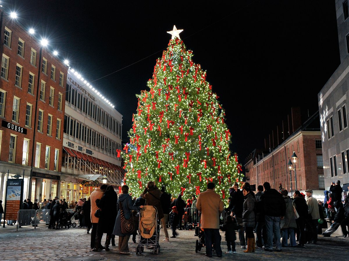 The South Street Seaport Christmas tree. The tree is tall and decorated with lights and ornaments. On both sides of the tree are various buildings.
