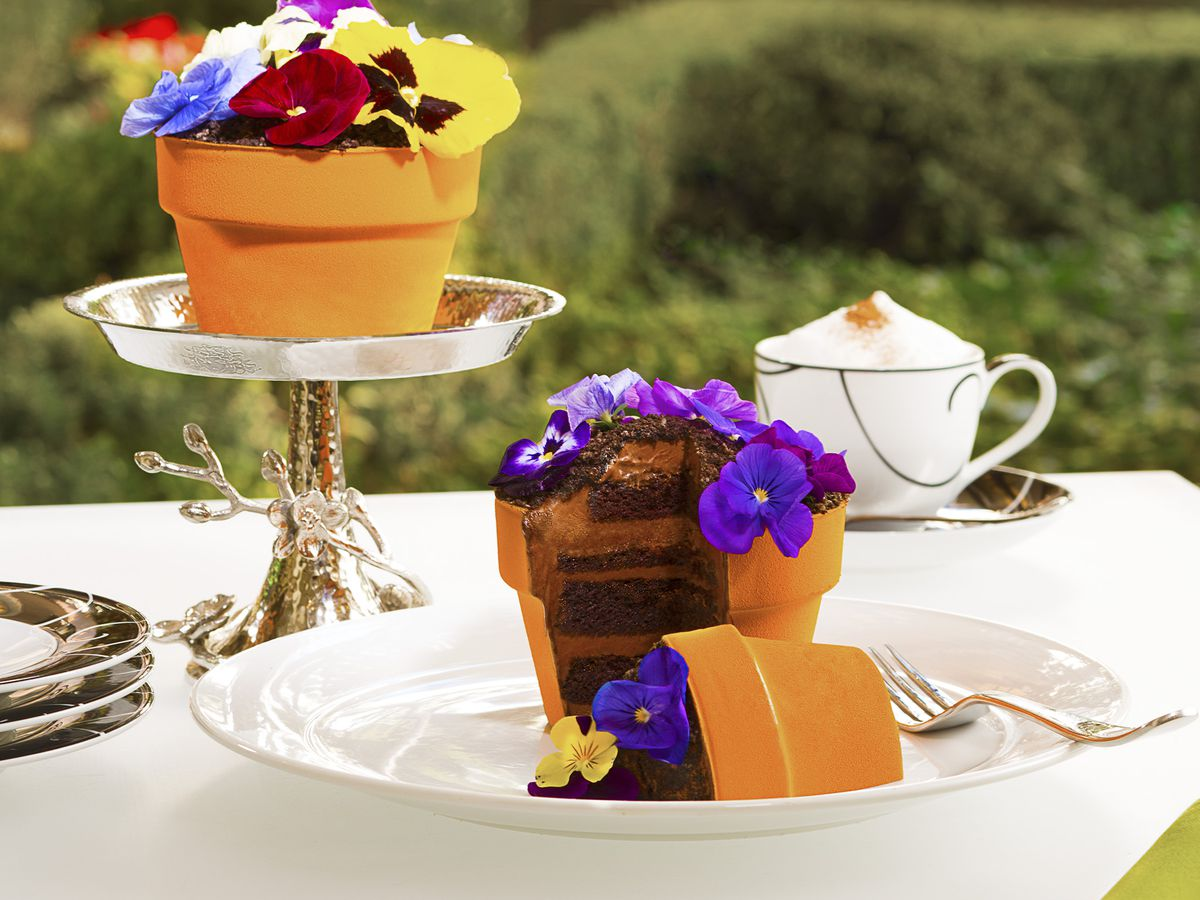 Two flower pot cakes