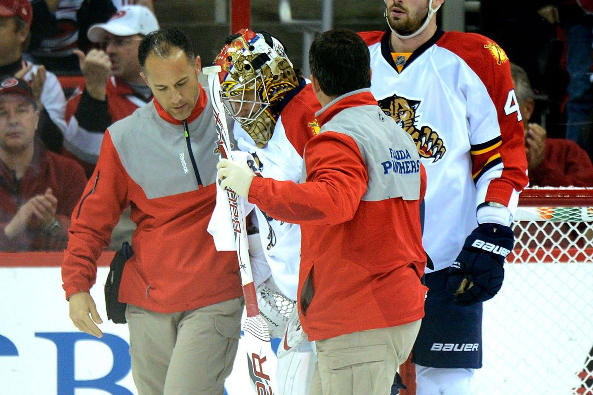 Jose Theodore joins a long list of injured Panthers this season.