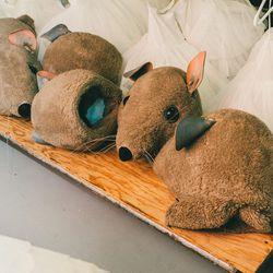 The children's mice heads.