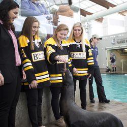 Boston Blades forward Kate Leary feeds Ursula.