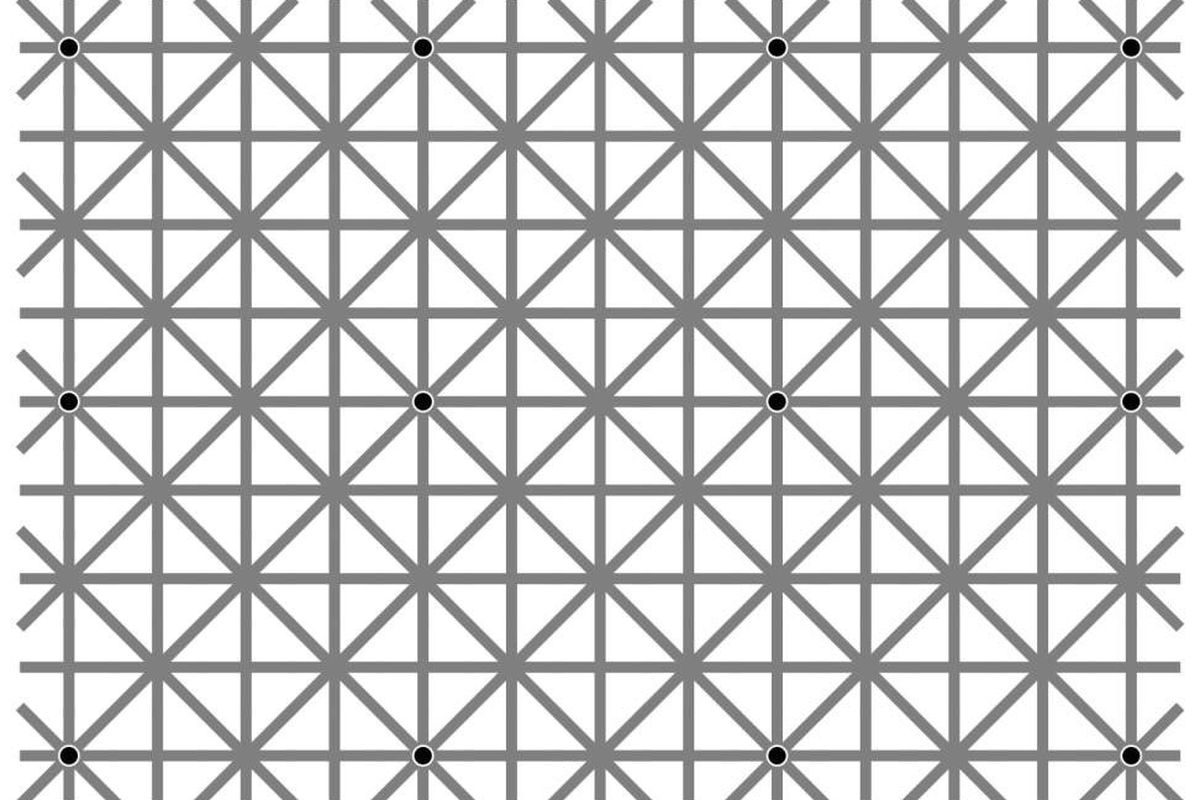 Here S Why You Can T See All Twelve Black Dots In This Optical