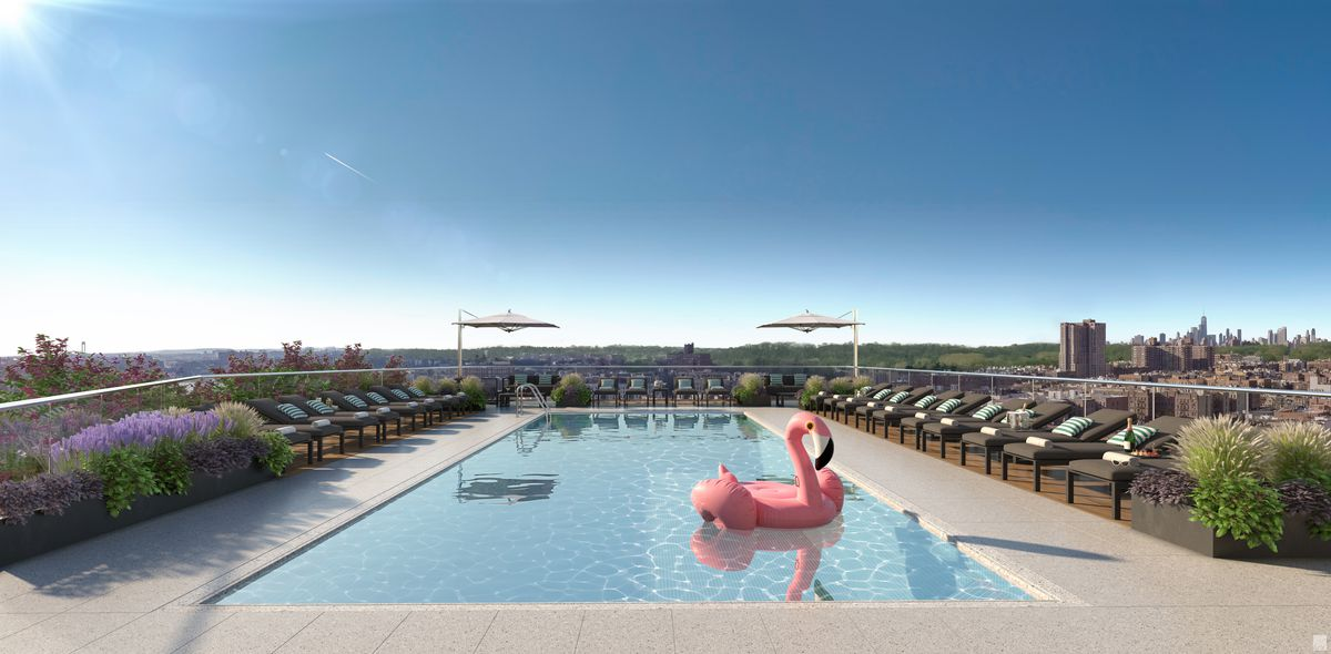 A rooftop rectangular pool.