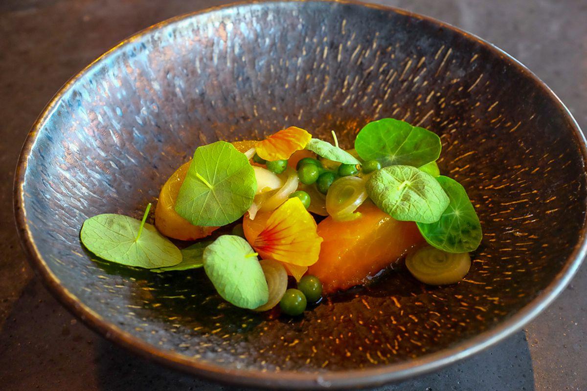 Apricot with nasturtium at Torino.