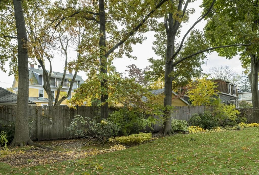 A backyard with trees along a table wooden fence.