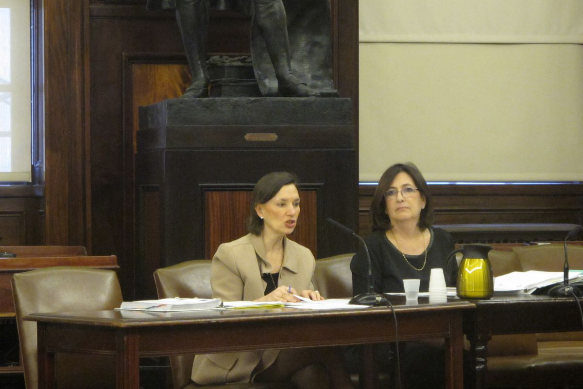 Acting Deputy Chancellor for Operations Elizabeth Rose and School Construction Authority CEO Lorraine Grillo testify at a City Council Education Committee hearing on school space.