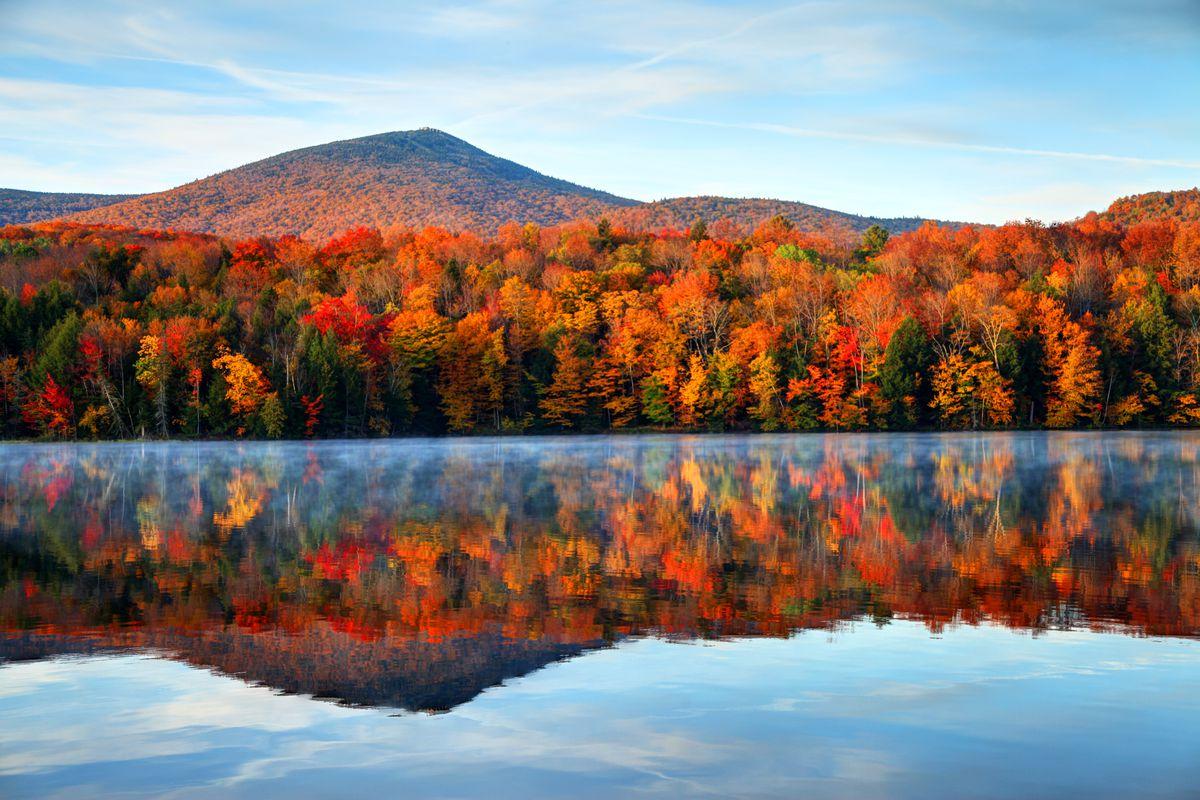 Fall Colour In Long Island