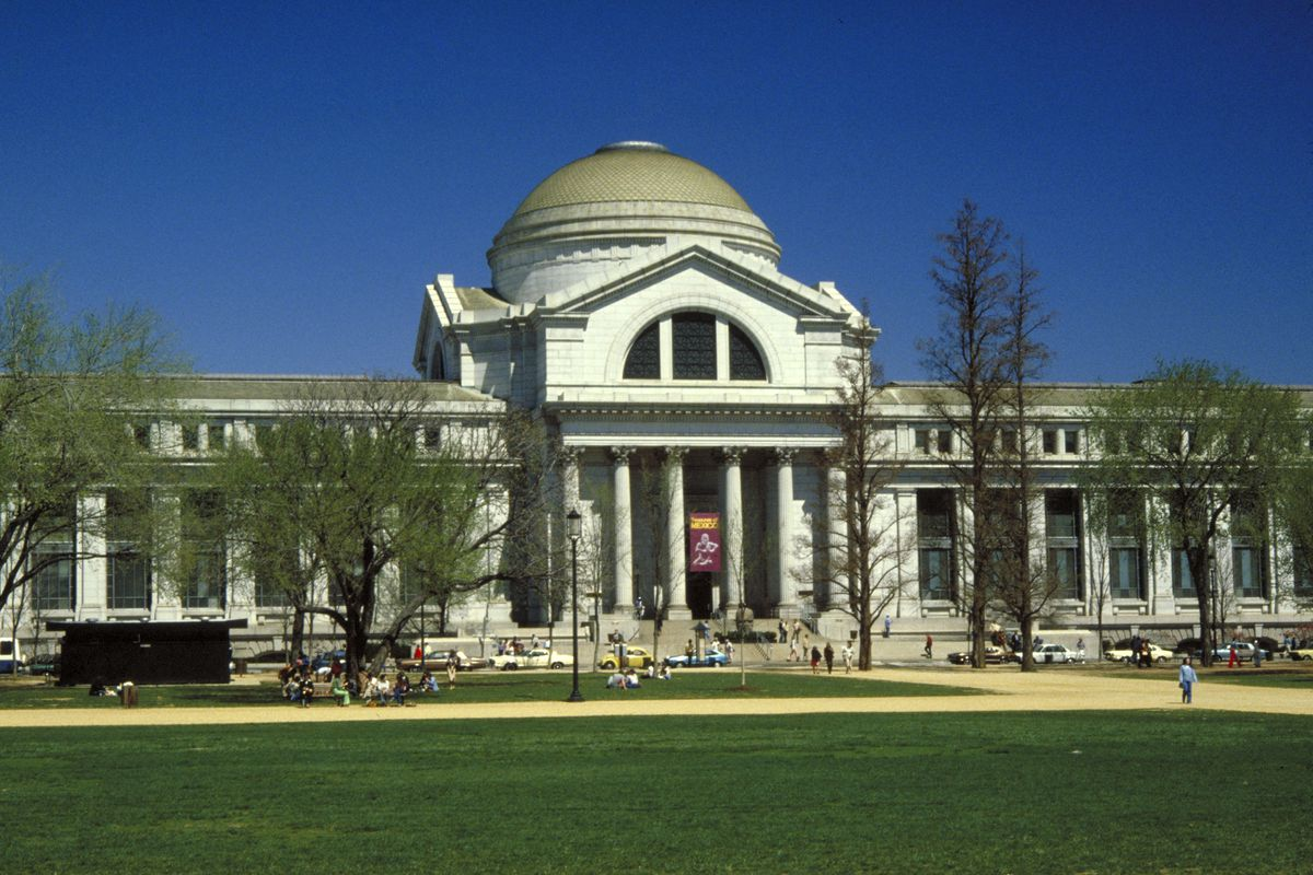 vertebrate zoology at Smithsonian
