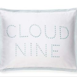 "<a href=""http://www.katespade.com/home-decor/bedding-sets/thistle-street-bedding-17/291130YBE,default,pd.html?dwvar_291130YBE_color=457&start=10&cgid=bedding-bath"">Whisper Whirl Cloud Nine Pillow</a> $40"
