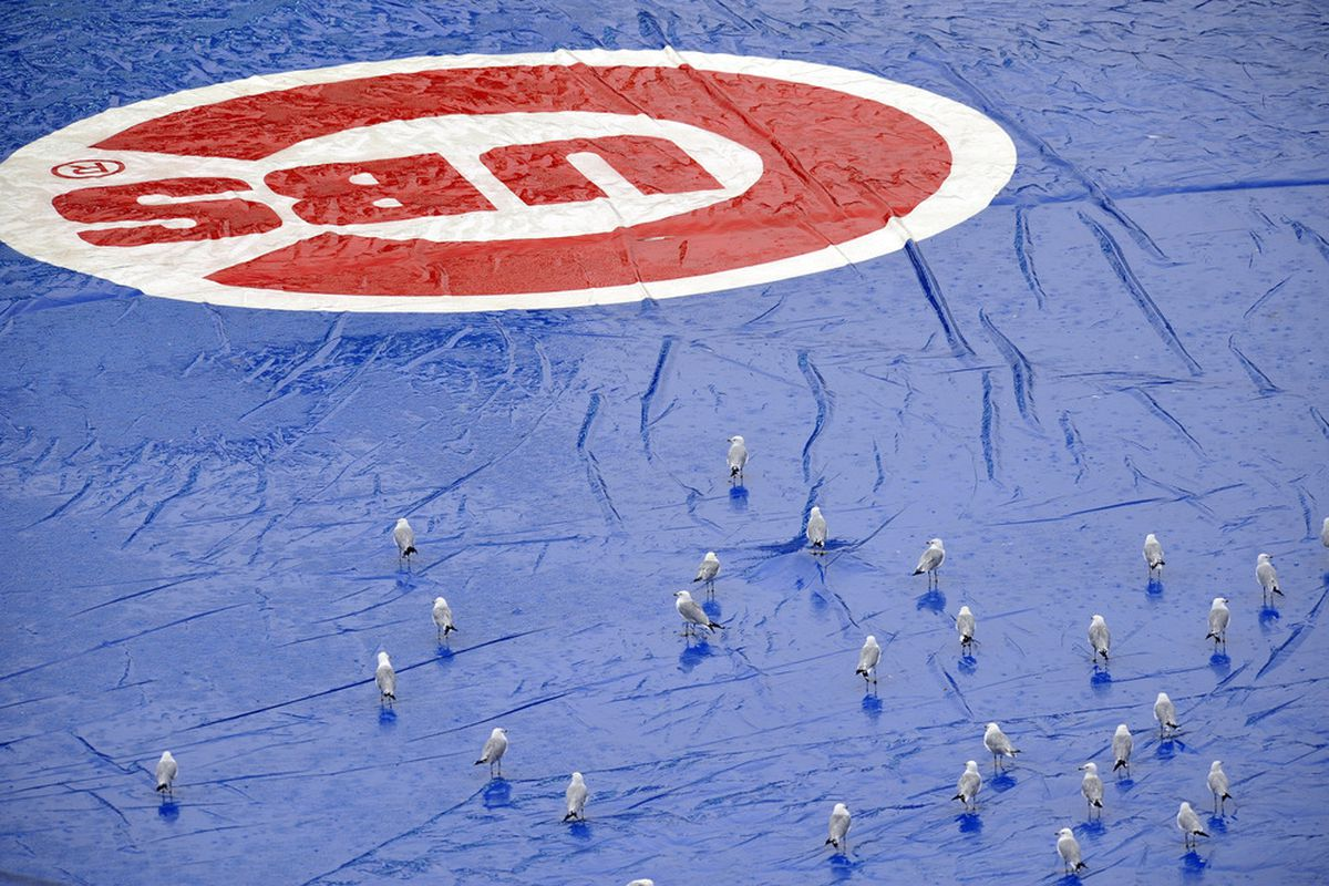 CHICAGO, IL - AUGUST 08: As rain falls seagulls sit on the tarp before the start of the game between the Washington Nationals and the Chicago Cubs on August 8, 2011 at Wrigley Field in Chicago, Illinois.  (Photo by David Banks/Getty Images)