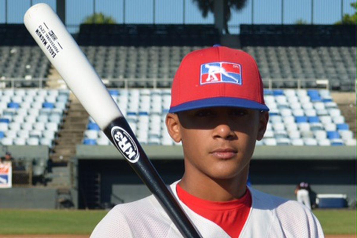 Fernando Tatis Jr.