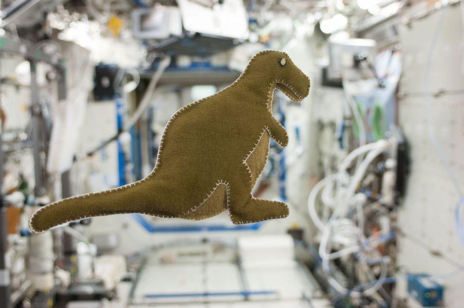 Lanzamiento de SpaceX: este dinosaurio de peluche es el indicador de cero g de Crew Dragon 2