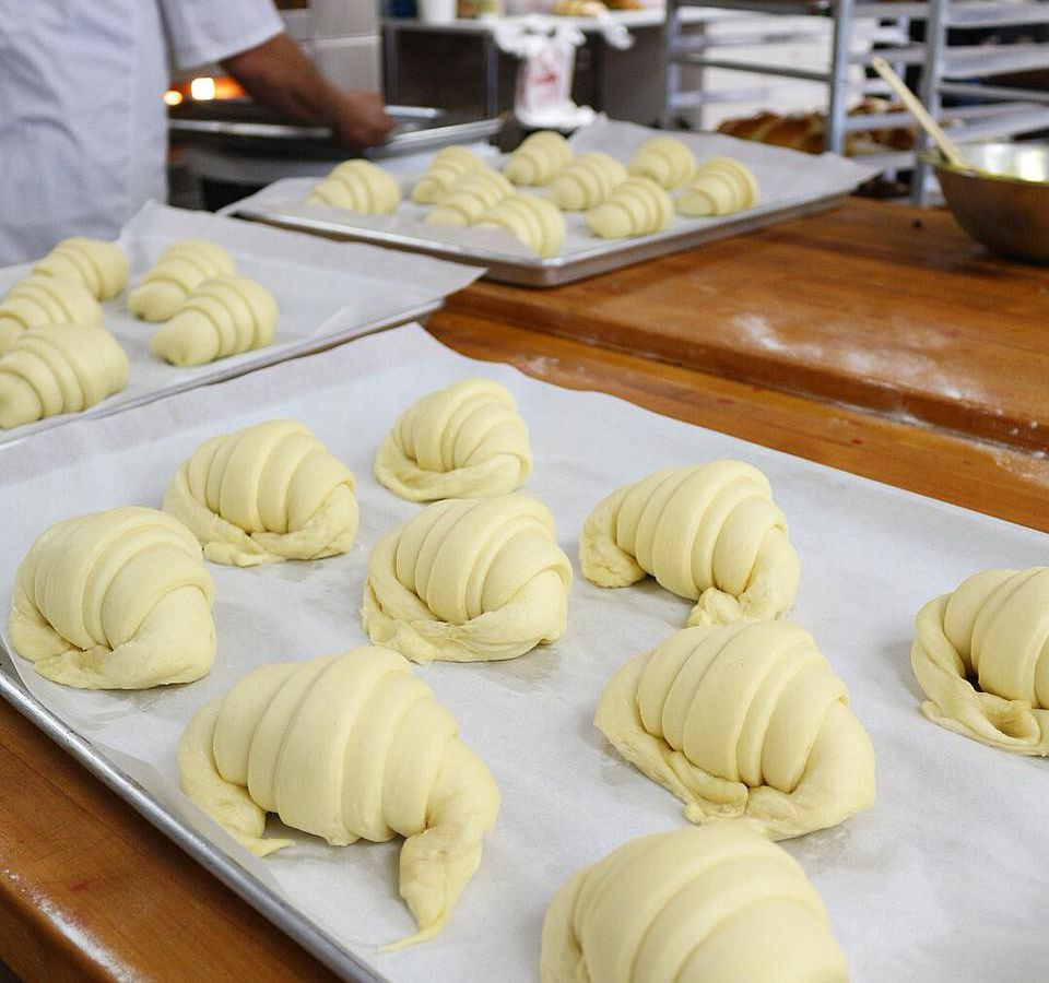 Rows of unbaked croissants