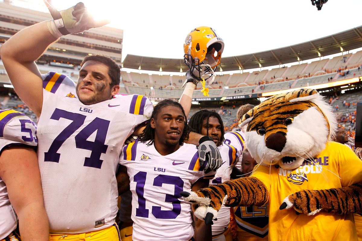 Even Mike the Tiger knows that you don't mess around with brain injuries