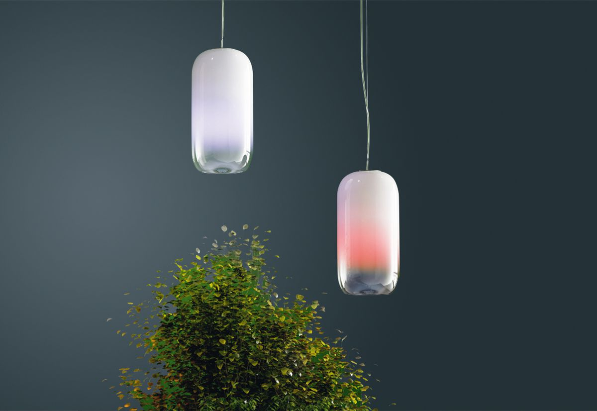 Blue and red pendant hanging above plant