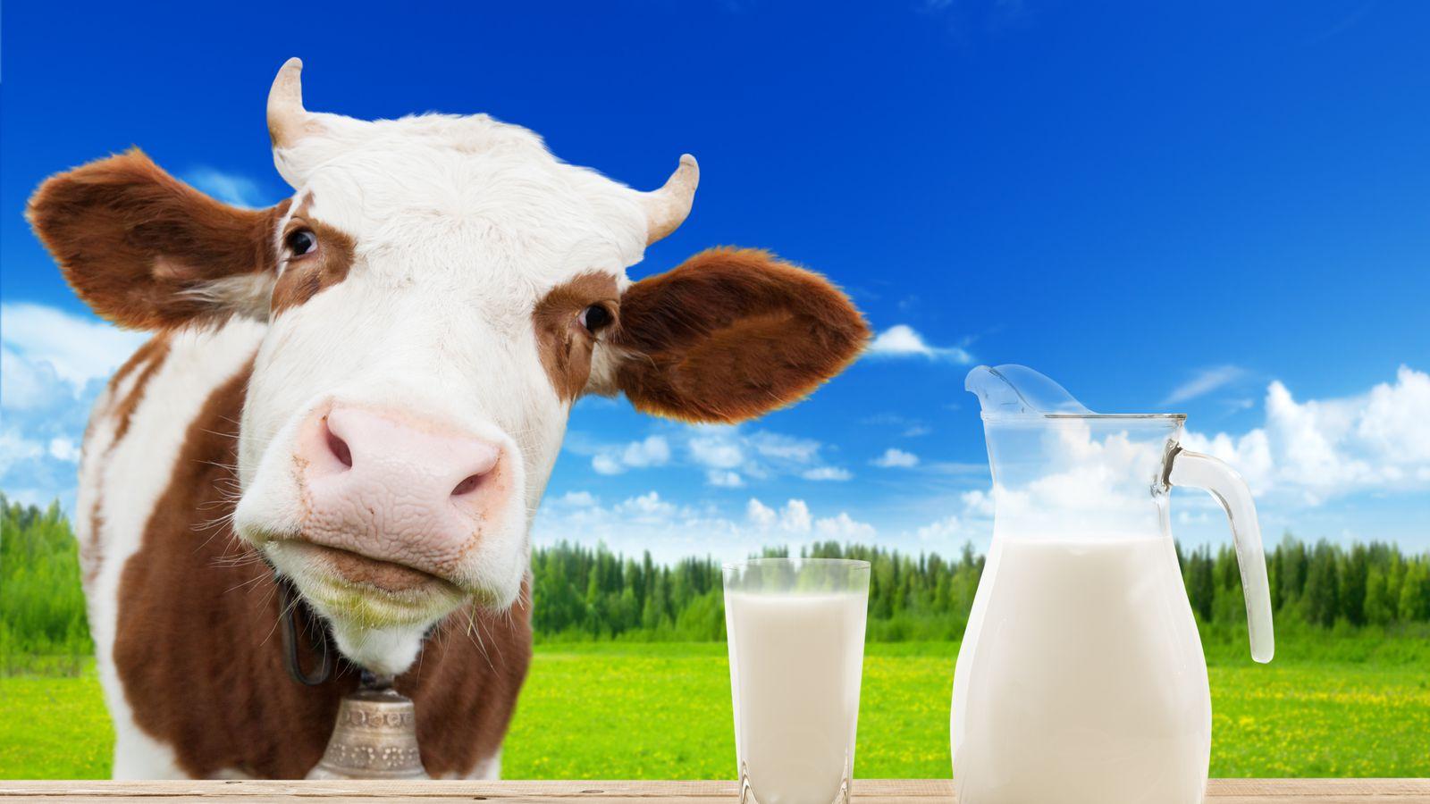 Google Makes Desktop Search Look More Mobile-ish to Milk More ...