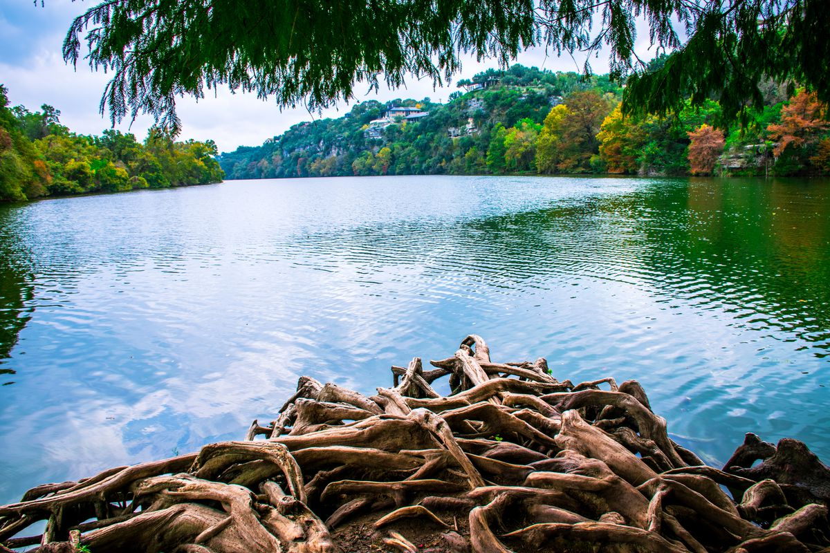Exposed, tangled bald cypress roots at end of island looking out over a calm river with hills and trees beyond.