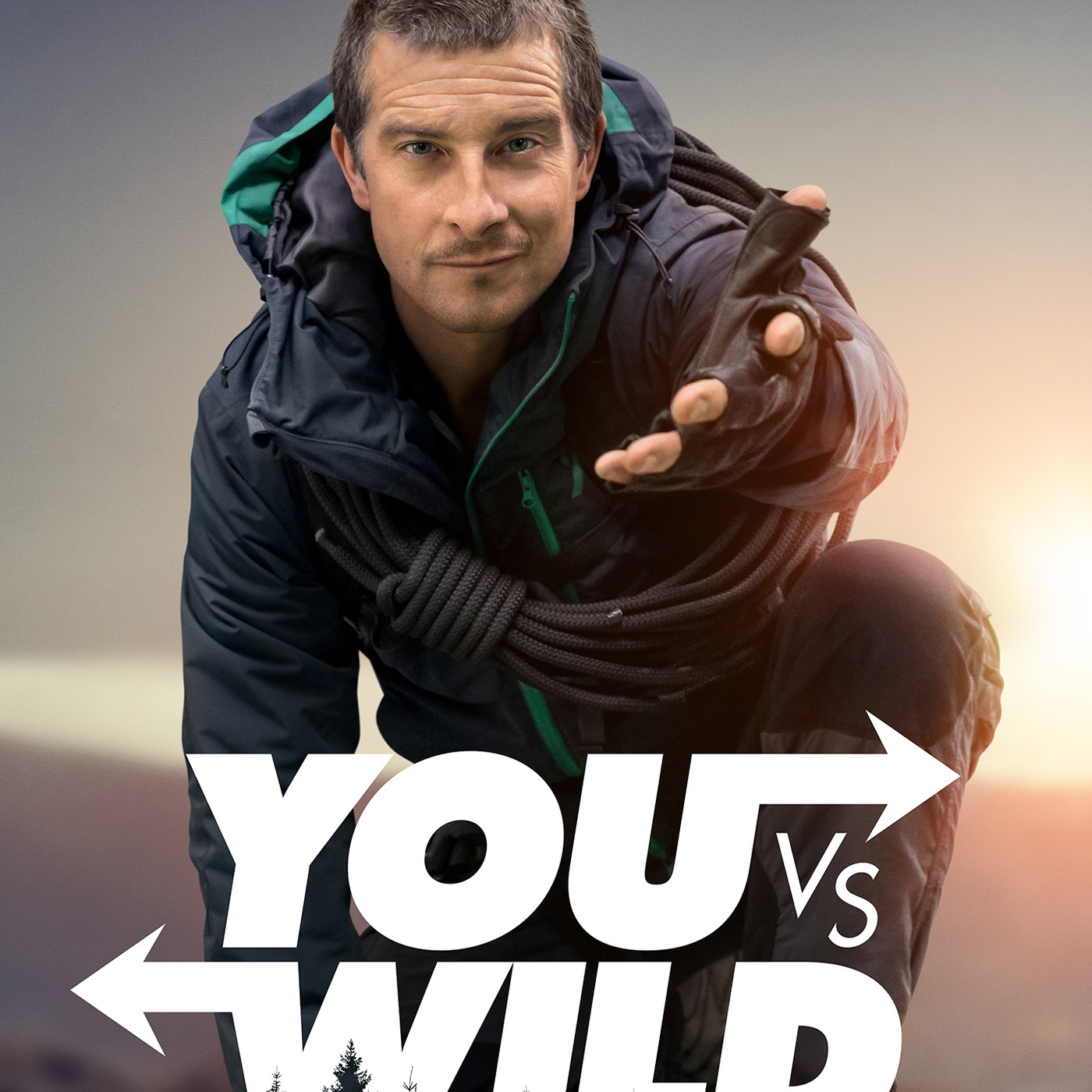 Image result for you vs wild