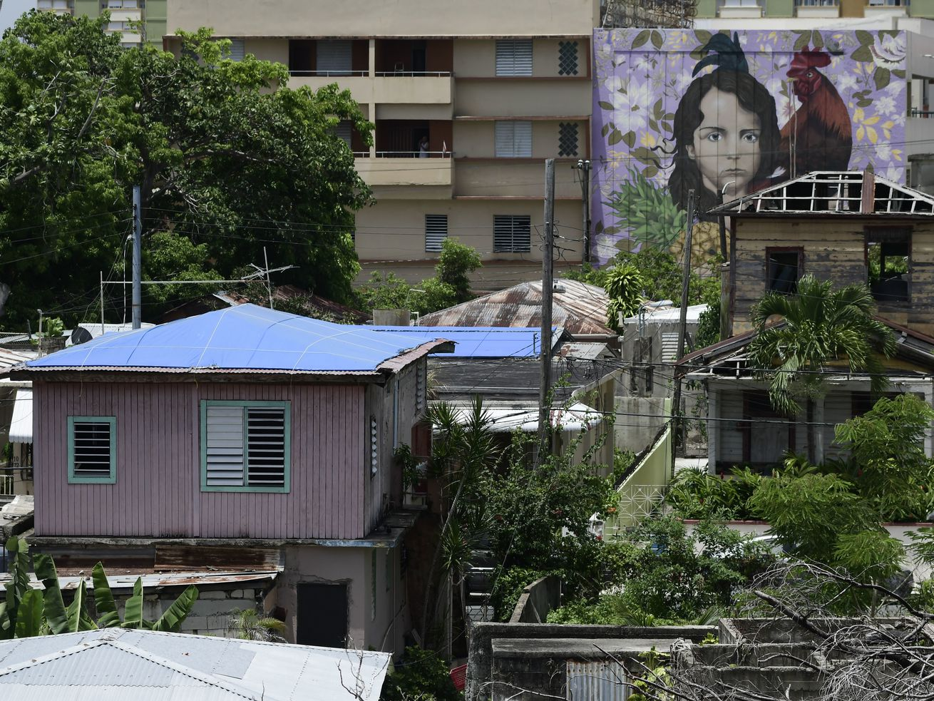 Houses affected by Hurricane Maria, some of them with their missing roofs covered in sturdy blue tarp, in San Juan, Puerto Rico, in June.