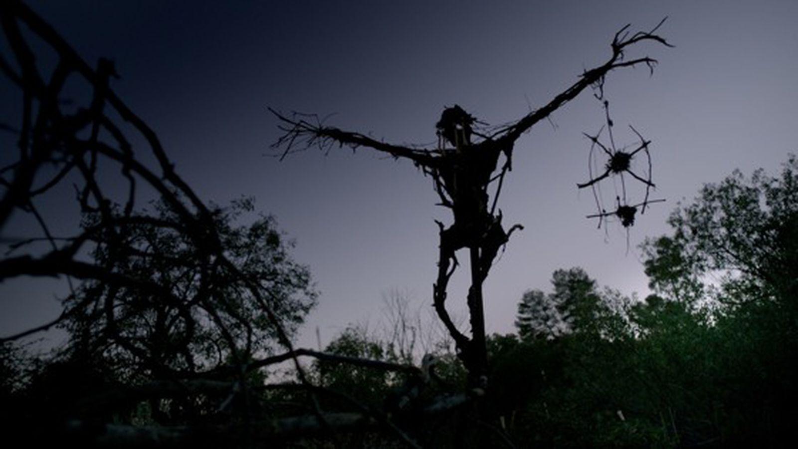 Mr Jones Review The Cabin In The Woods Horror Flick