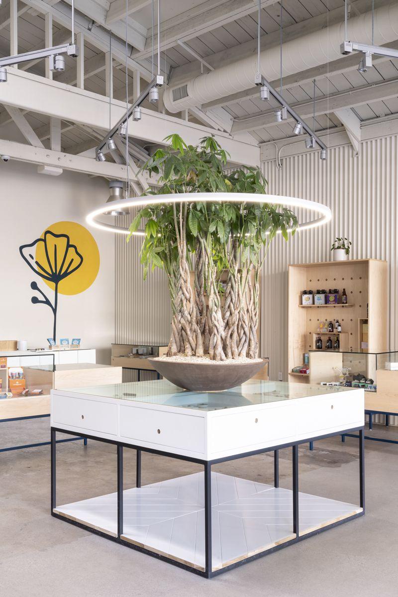 Sweet Flower Dispensary in Los Angeles, California.