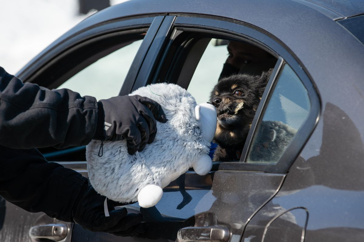 A dog receives a stuffed toy during the Cook County Sheriff's Office's drive-up pet food pantry near West 28th Street and South California Boulevard.