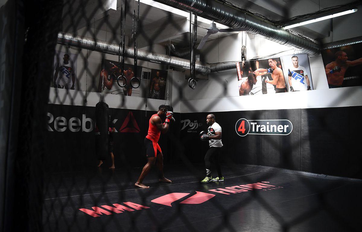 FRANCE-MMA-UFC-NGANNOU