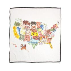 """<a href=""""https://www.madewell.com/newarrivals/ourredwhiteblues/PRDOVR~03747/03747.jsp"""">Madewell Painted States Scarf</a>, $49.50"""