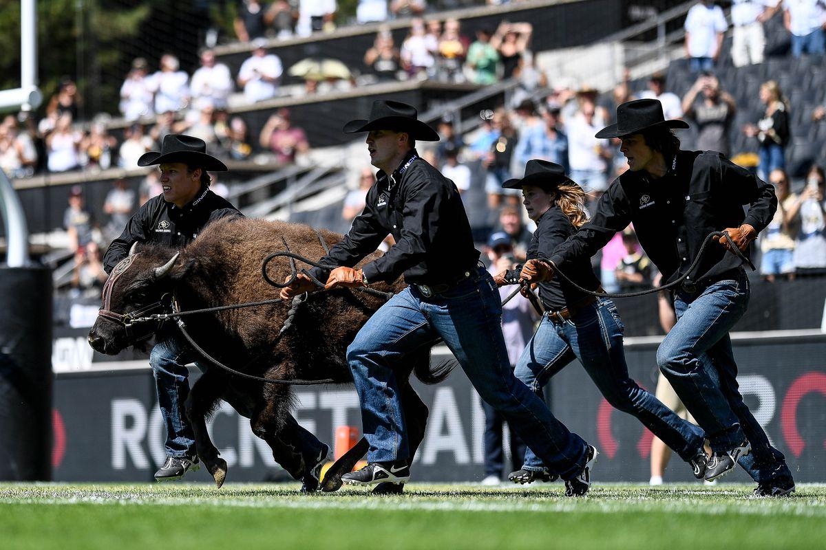 arizona-wildcats-colorado-buffaloes-game-thread-live-updates-pac12-football-chat
