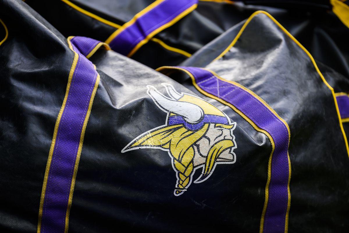 Arizona Cardinals v Minnesota Vikings