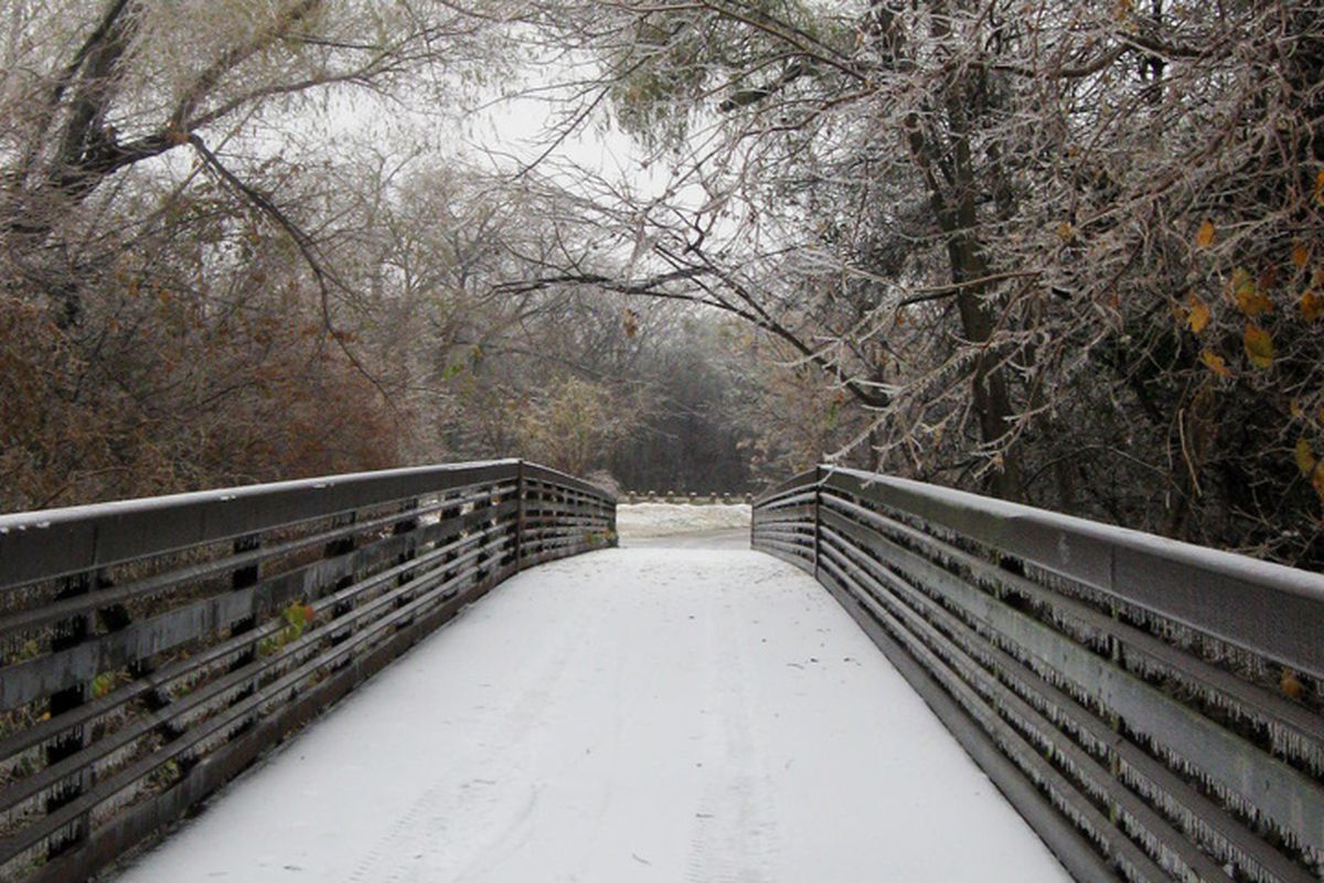 Running trails around Dallas' White Rock Lake were completely iced over in spots the day the race was to occur.