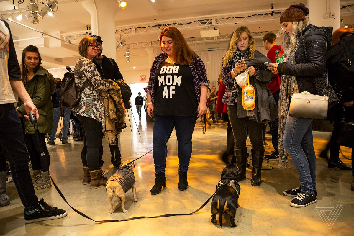 At Petcon Instagram Famous Dogs Meet Their Adoring Fans The Verge