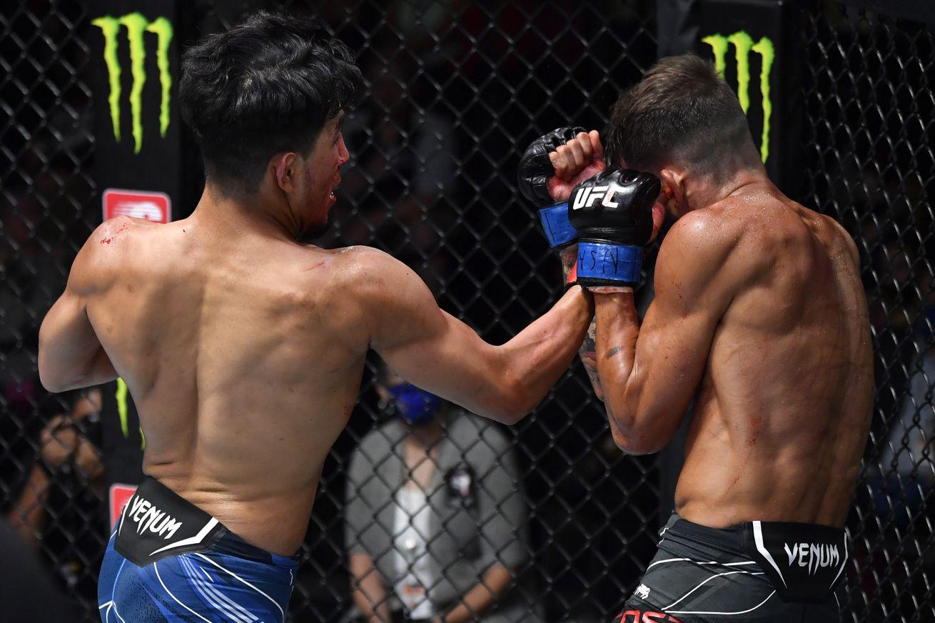 UFC Fight Night: Yanez v Costa