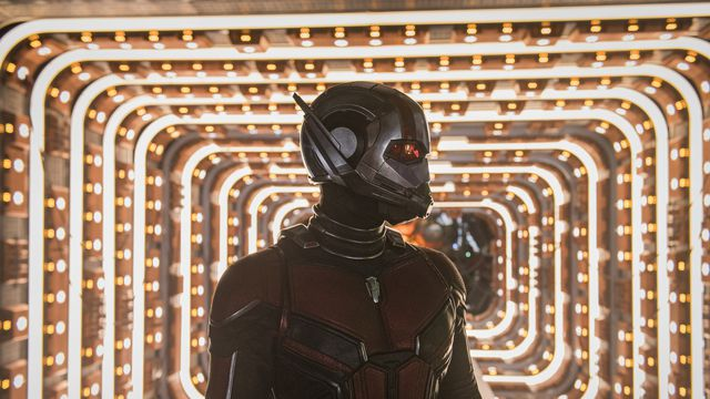 ant-man in ant-man and the wasp
